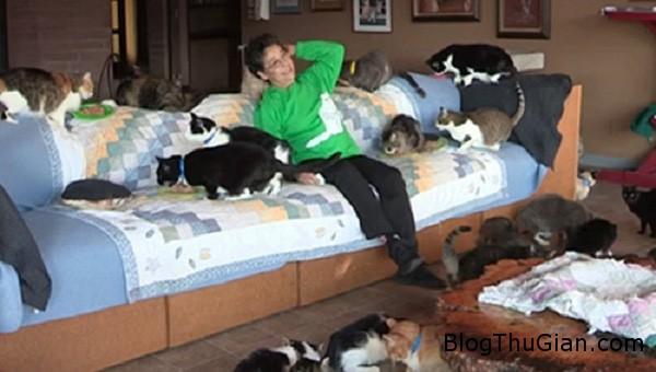 nuoimeo1 Người phụ nữ sống chung với hơn 1.100 chú mèo trong nhà