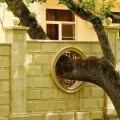Bạn sẽ xem xét lại việc chặt cây để xây nhà khi nhìn thấy thiết kế độc đáo dưới đây